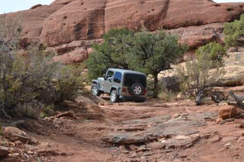 elephant hill 4x4 trail