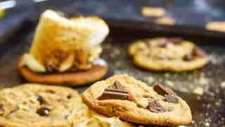 Graham Cracker Chocolate Chip Cookies with Toasted Marshmallows