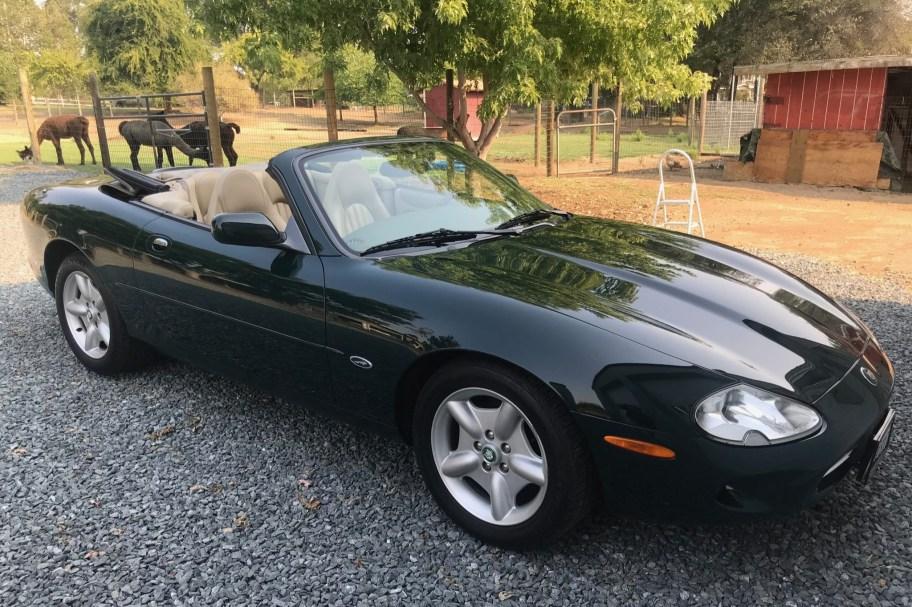 No Reserve: 1998 Jaguar XK8 Convertible