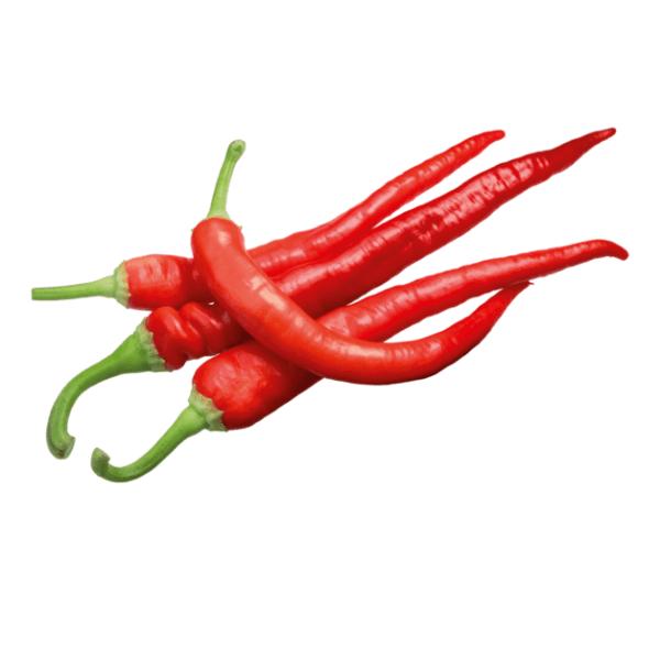 Peproncini Rot ca. 50gr-min