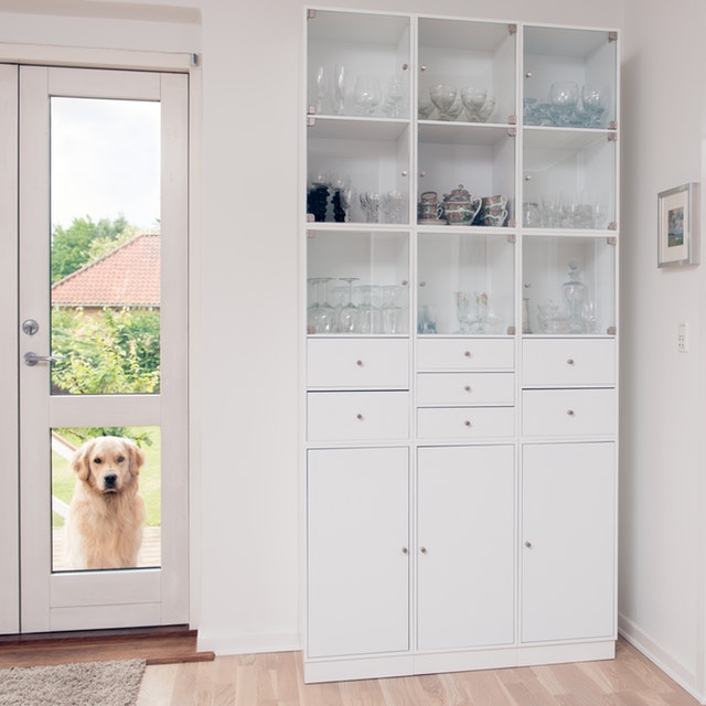 Pros And Cons Of Installing A Pet Door