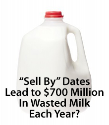 Milk lasts beyond its Sell By date
