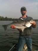 Fish156