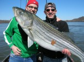 Fish65