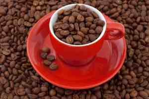 red cuffee cup full of coffee beans on a mountain of coffee beans