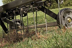 brinlydethatch 300x200 - What is a Dethatcher? And How to Correctly Dethatch Your Lawn