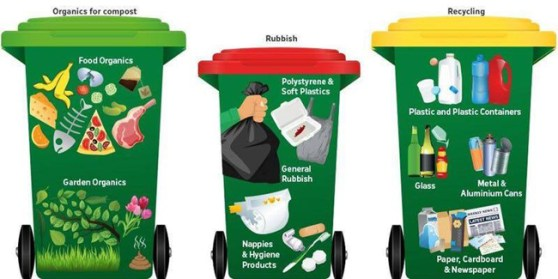 FOGO bin set up - green lid bin is for compostables and green waste, red lid is for landfill and yellow lid is for recyclables