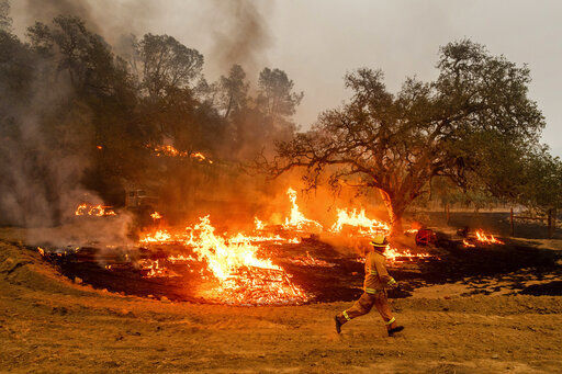 A firefighter runs past flames while battling the Glass Fire in a Calistoga vineyard Oct. 1. Smoke impact has reduced the 2020 grape harvest and the paychecks of those who pick the grapes. AP Photo/Noah Berger