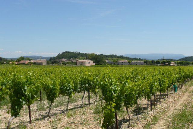 Saint Martin de la Brasque, Luberon AOC; wikimedia commons