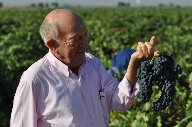 Pesquera is credited for turning around the fortunes of Ribera del Duero in the 1980s, and remains one of the most highly regarded wineries in Spain.