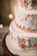 photos-of-wedding-cakes-at-briscoe-manor-011