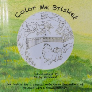 Color Me Brisket coloring book