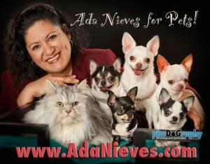 ADA NIEVES FOR PETS