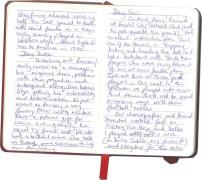 Roy-Diary-pg3