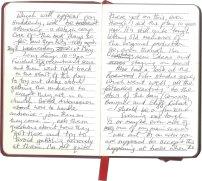 Roy-Diary-pg8