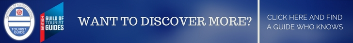discover more article footer link