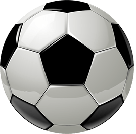 Watch soccer - or Earopean Football - at Britannia Arms Almaden
