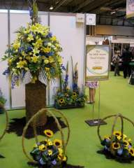 NAFAS AMD floral display at Gardener's World Live 2009