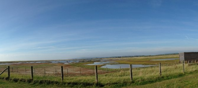 Exploring Sussex: Rye Harbour