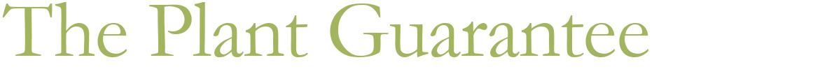 garden buildings, outdoor furniture, gardening products