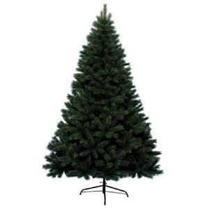 210cm Grandis Fir Hinged Christmas Tree