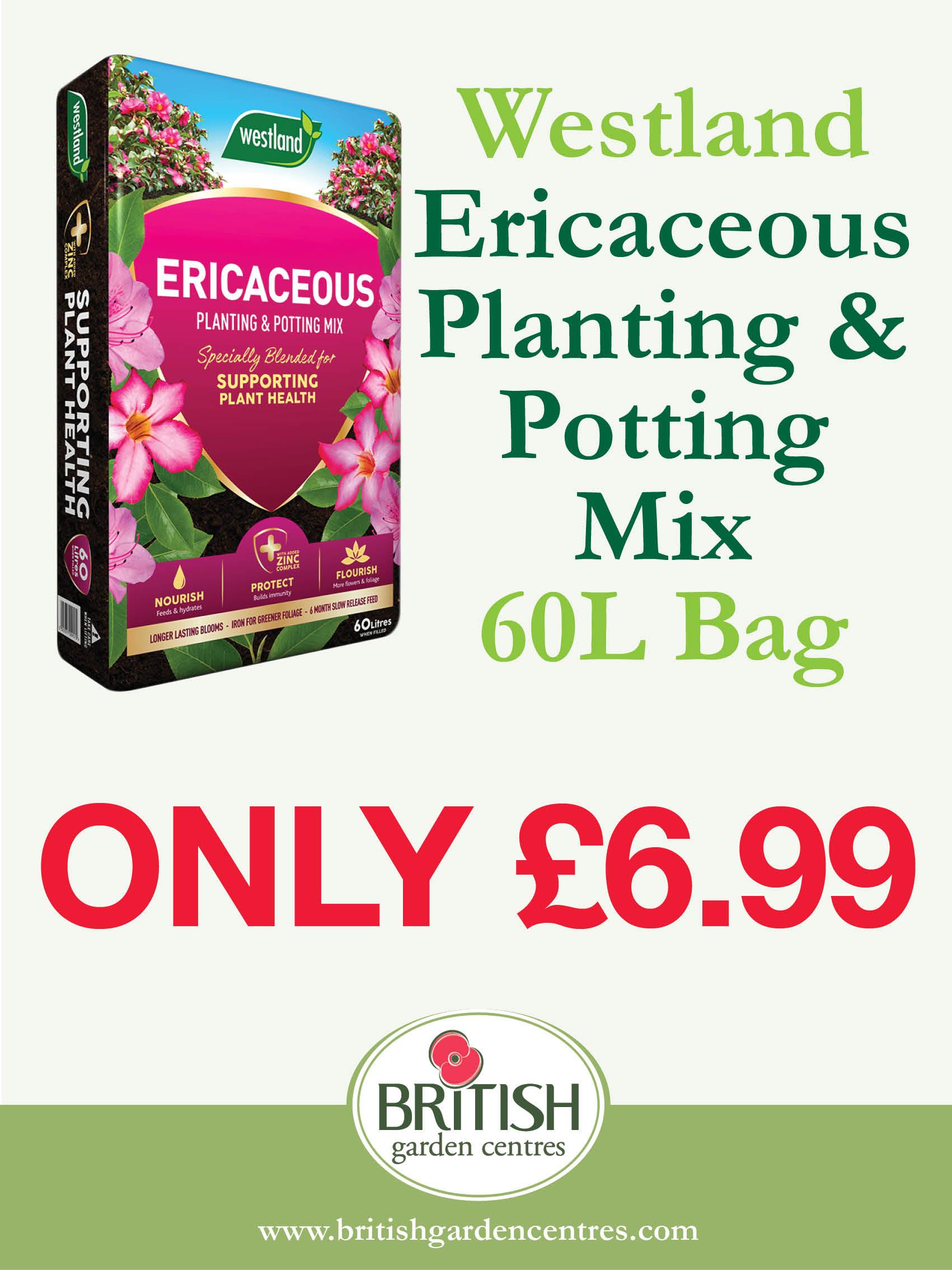 Ericaceous Planting & Potting Mix 60L