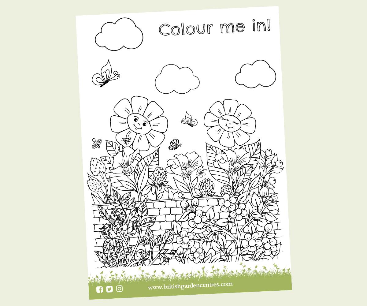 Sunflower colouring Sheet