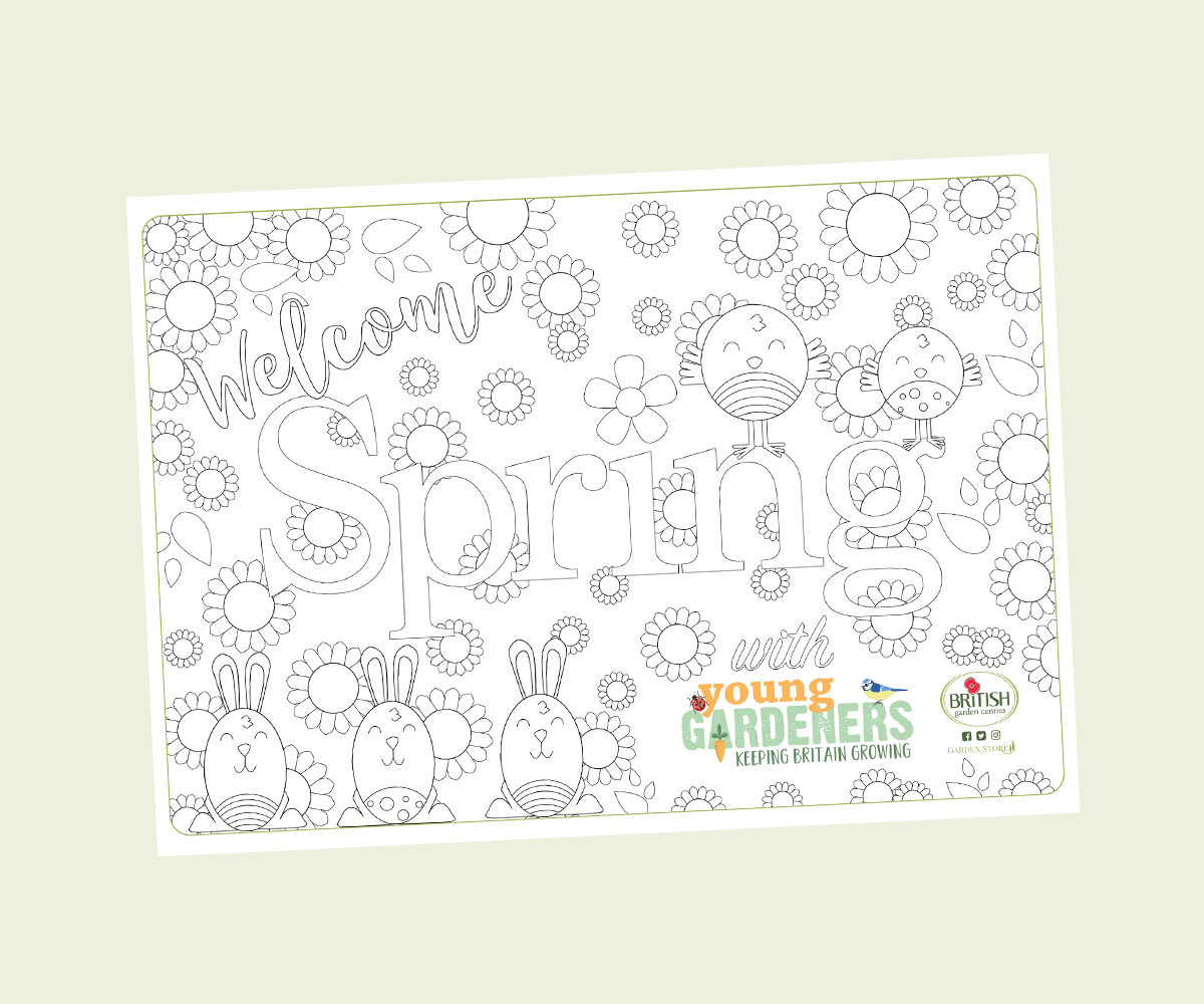 Spring download colouring sheet 1