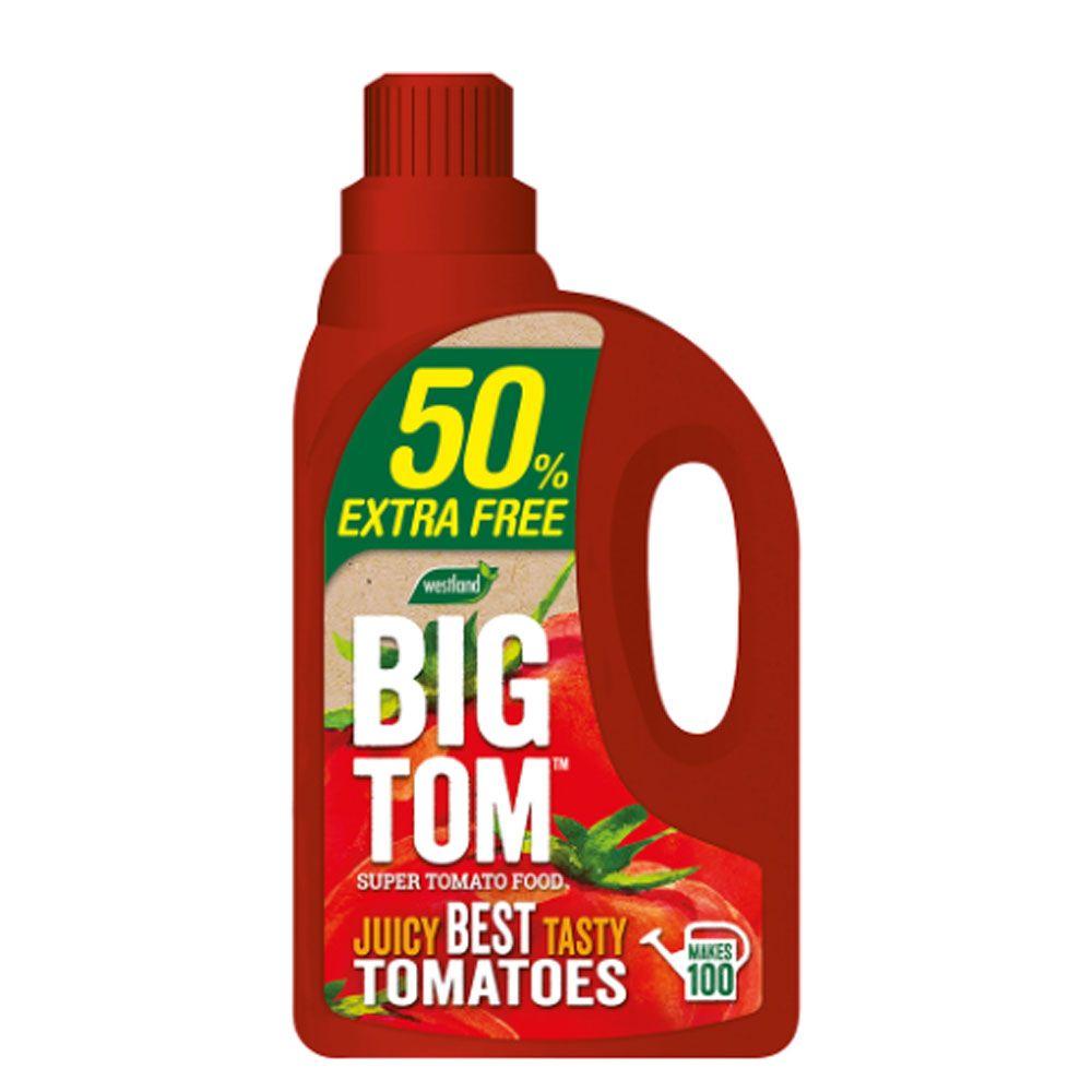 Big Tom Tomato Feed