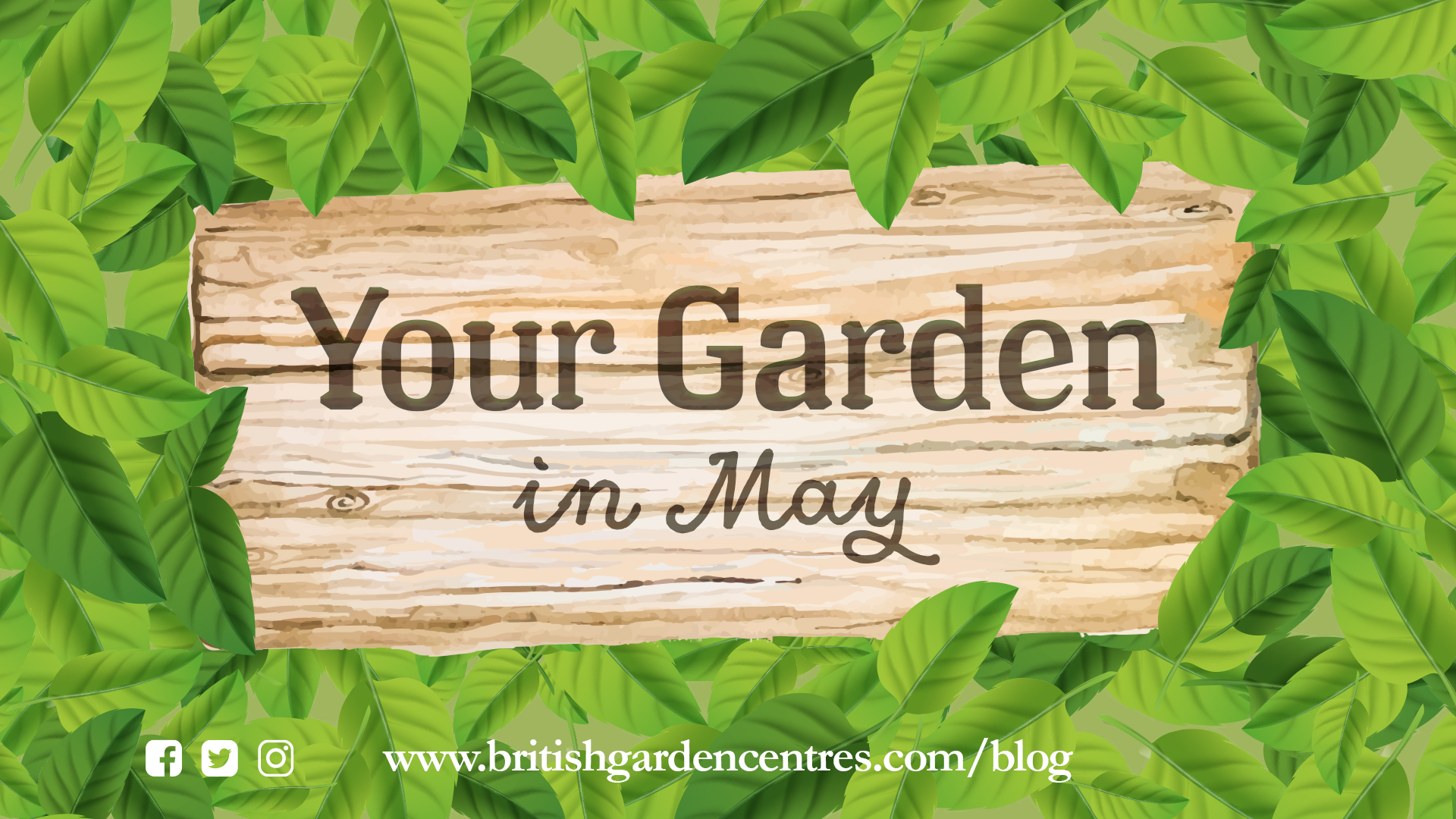 Your garden - May