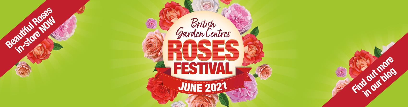 Festival of roses banner BGC
