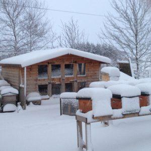 corsock winter