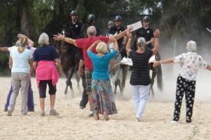 Horse Training Centre 011
