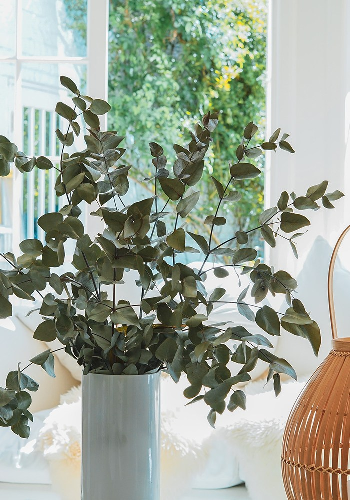 The Finishing Touches: Easy Ways to Freshen up Your Home Décor