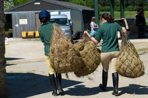 Carrying horse bedding