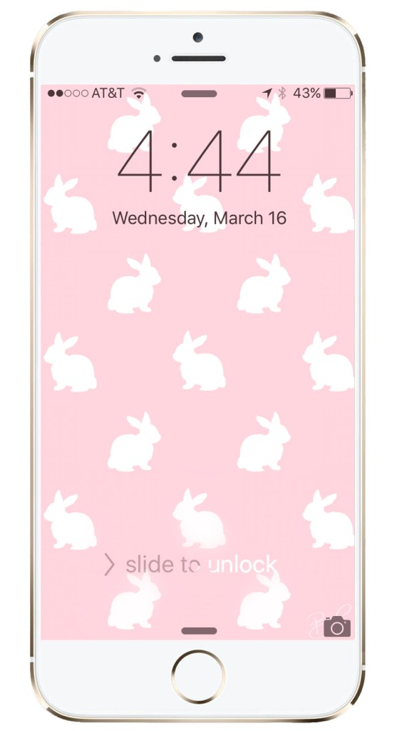 easter spring bunny iPhone wallpaper HD