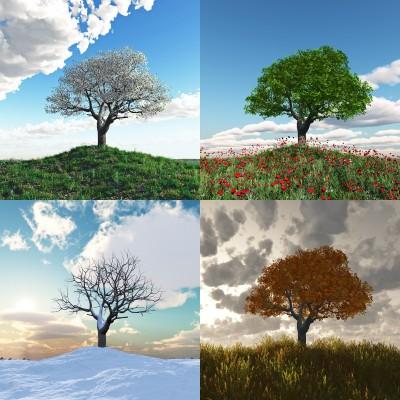 Wholeness: A Change of Season