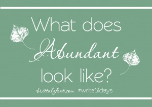 Write31Days What does Abundant look like