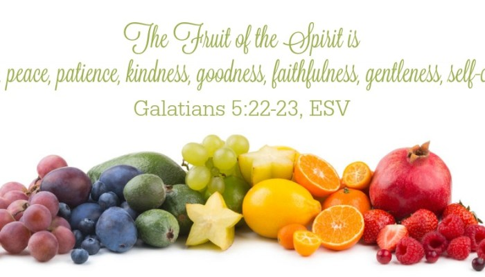 Day 13 #CuratingtheGood — Good Fruit