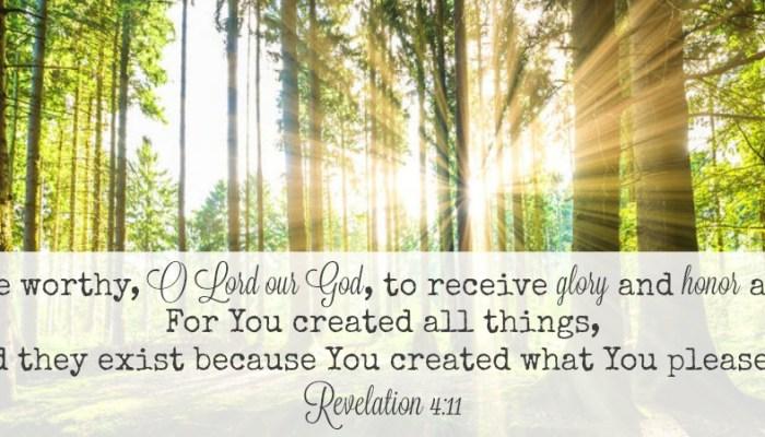 Day 15 #CuratingtheGood — Good Lord!