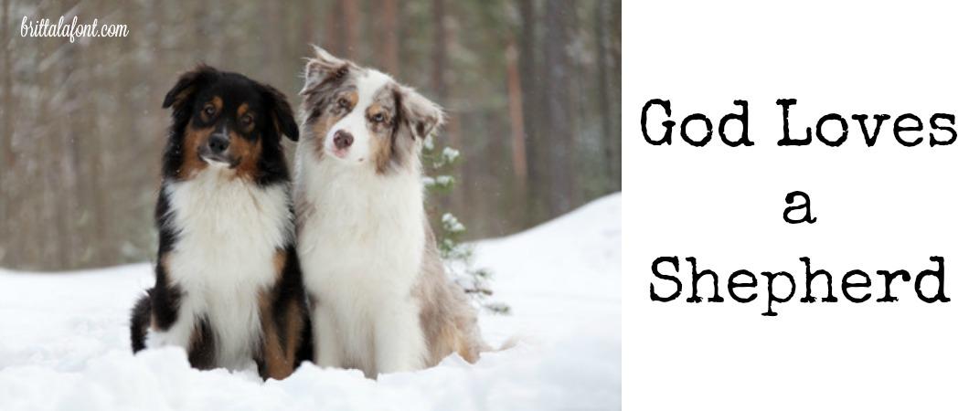 Remember: God Loves a Shepherd