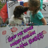 Miss BeBEE's Virtual Kissing Booth