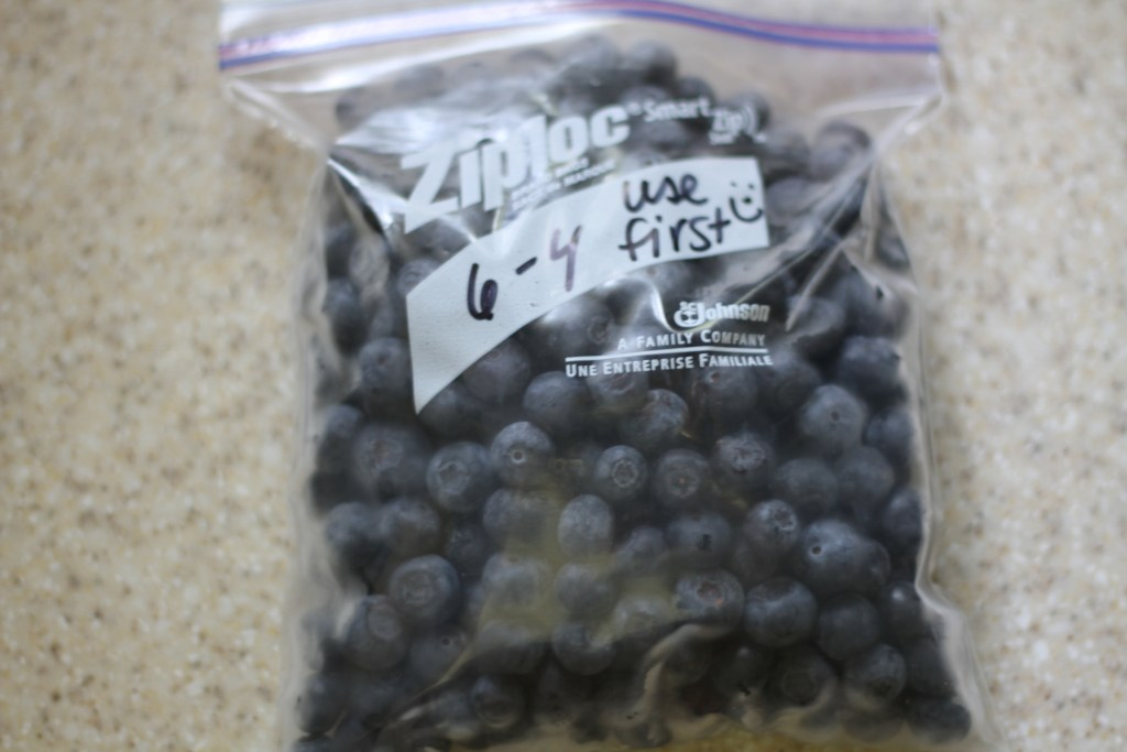 How To: Freeze Berries - A Step by step guide on how to do it! {Brittany's Pantry}