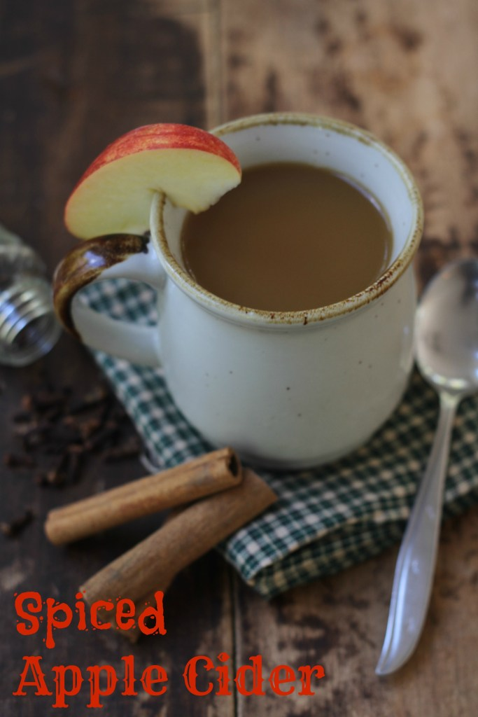 This Spiced Apple Cider is classic and super easy. You will be making it all season long! {Brittany's Pantry}
