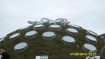 living roof