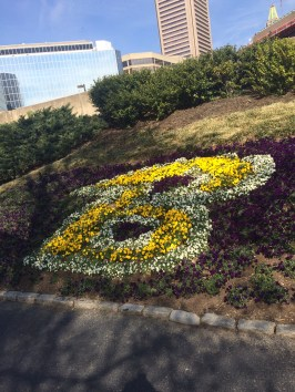 Cool B made out of flowers