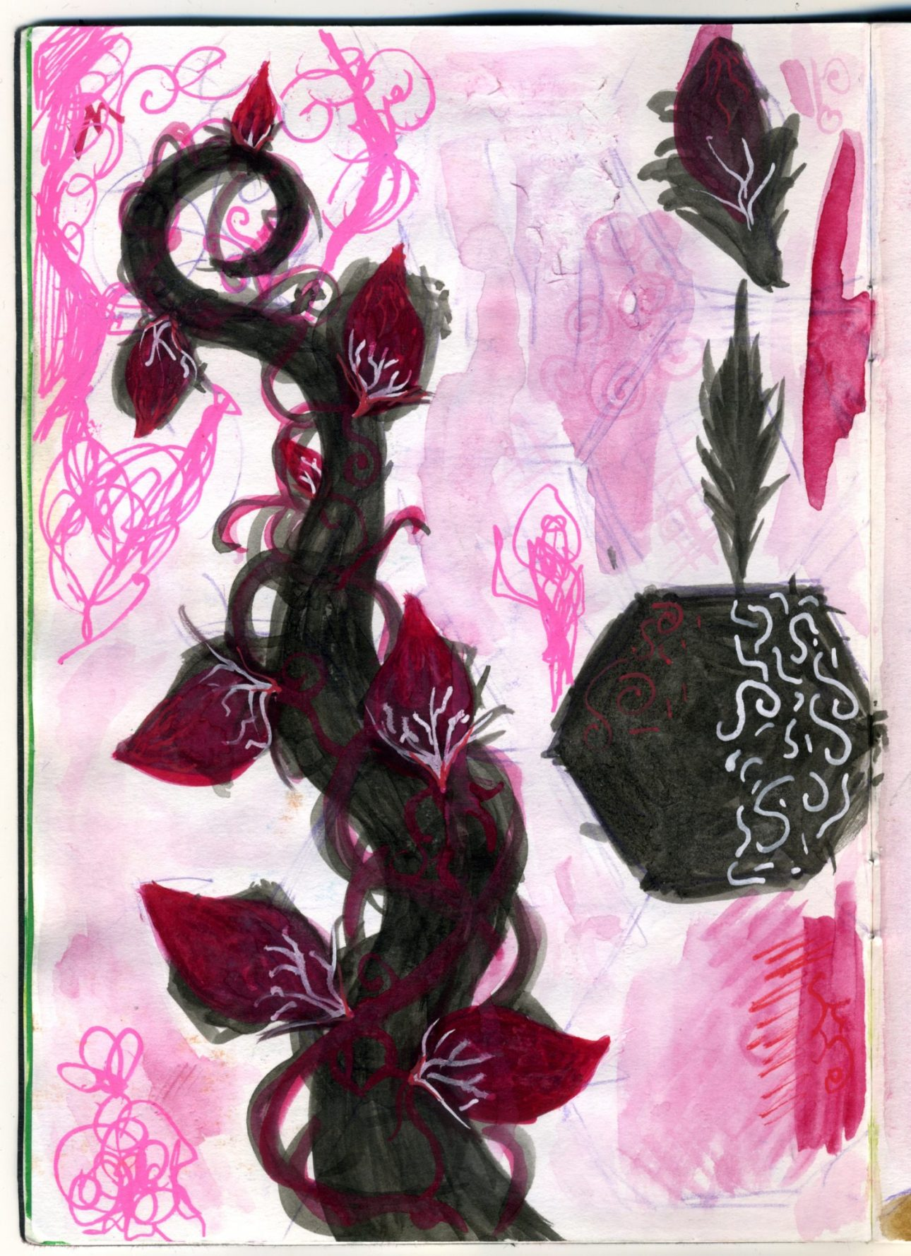 A watercolour sketch of a darker version of the Jack and the Beanstalk style beanstalk.