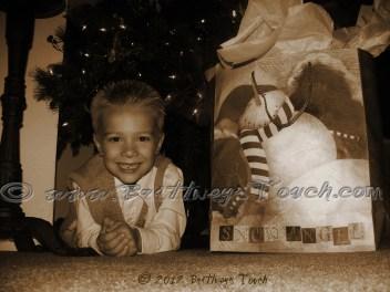 Christmas Package watermark
