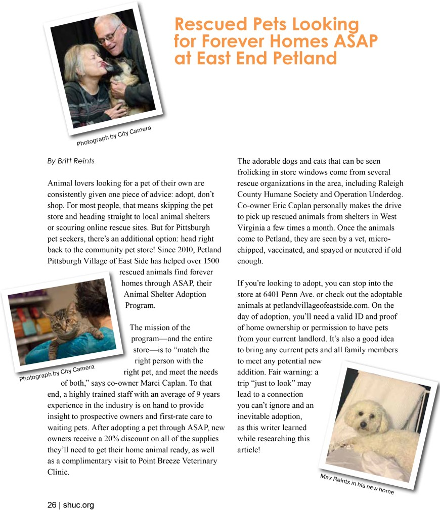 Rescued Pets – Squirrel Hill Magazine