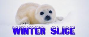 winter_slice300ban.jpg